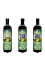 HEALTHY ISLAND NONI JUICE Liquid Vitamins Health Drink 03-Bottles